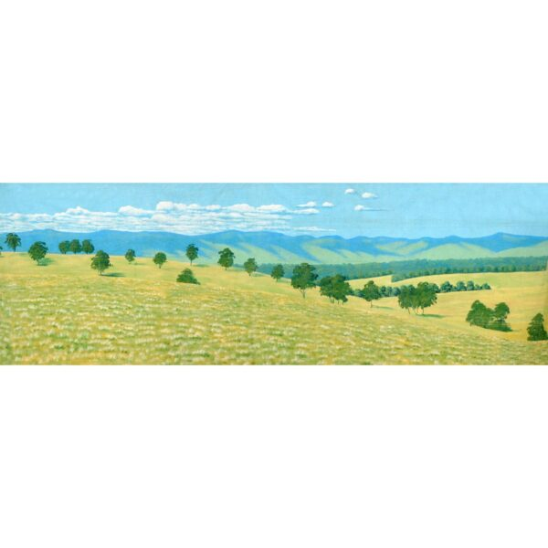 Countryside Panorama Hills With Trees Painted Backdrop BD-0118