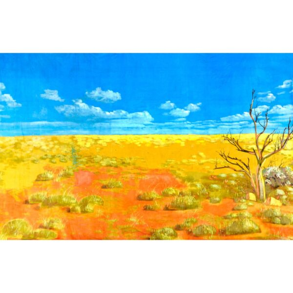 Australian Outback Desert Landscape With Spinifex Painted Backdrop BD-0125