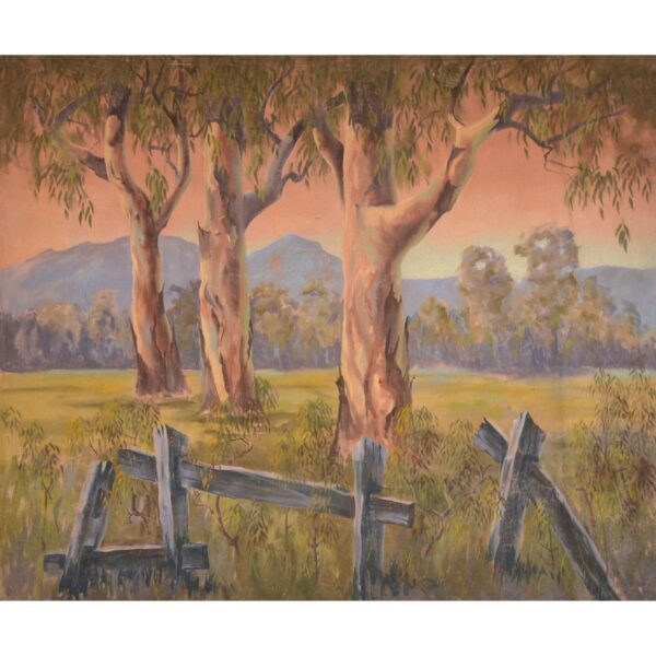 Gum Trees and Fence Painted Backdrop BD-0129