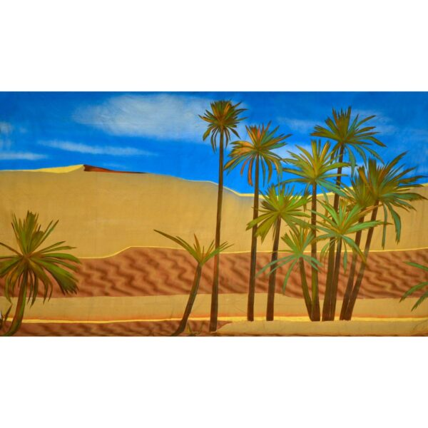 Arabian Desert Painted Backdrop BD-0681