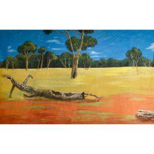 Australian Outback Desert Landscape With Grassy Fields Painted Backdrop BD-0112