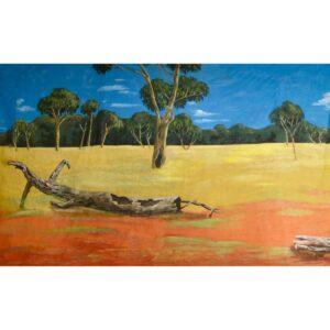 Australian Outback Desert Landscape With Grassy Fields Painted Backdrop BD-0112
