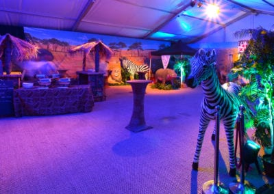 African Theme - Sydney Prop Specialists