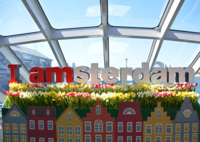 Amsterdam Theme - Sydney Prop Specialists