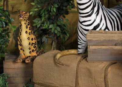 Safari Theme - Sydney Prop Specialists