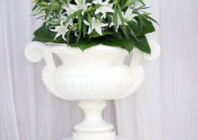 White Theme - Sydney Prop Specialists