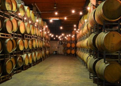 Winery Theme - Sydney Prop Specialists