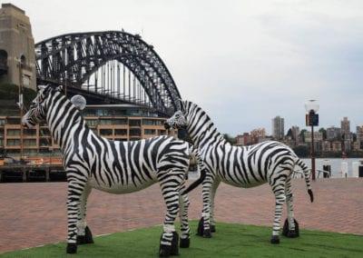 Animals - Sydney Prop Specialists