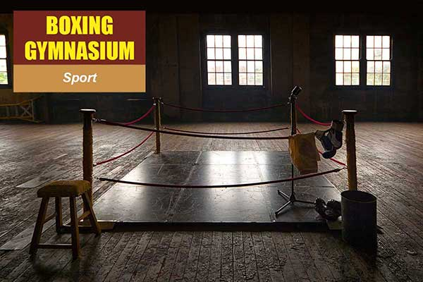 Boxing Gymnasium Theme - Sports Themes -  Sydney Prop Specialists