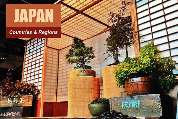 Japan Theme - Sydney Prop Specialists