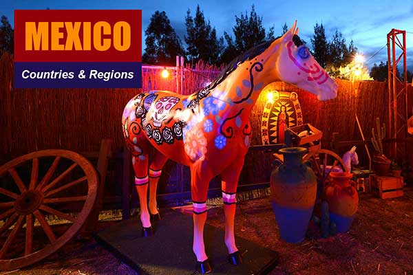 Mexico Theme - Sydney Prop Specialists