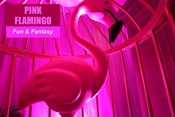 Pink Flamingo Theme - Fun and Fantasy Themes - Sydney Prop Specialists