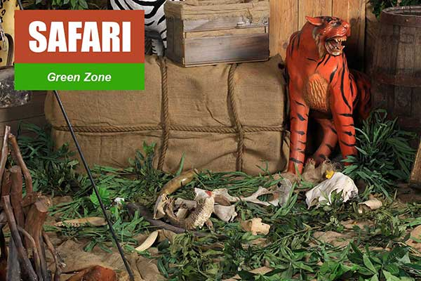 Safari Theme - Green Zone Themes -  Sydney Prop Specialists