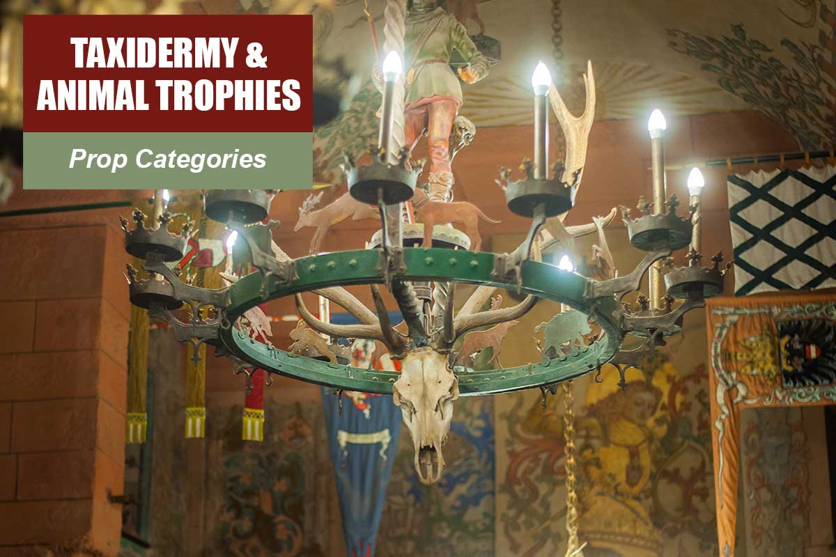 Taxidermy and Animalo Trophies -  Sydney Prop Specialists