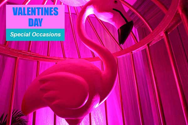 Valentines Day Theme - Special Occasion Themes -  Sydney Prop Specialists