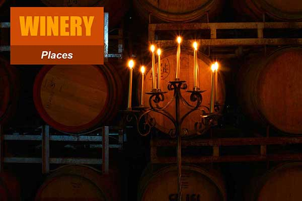 Winery Theme - Place Themes -  Sydney Prop Specialists