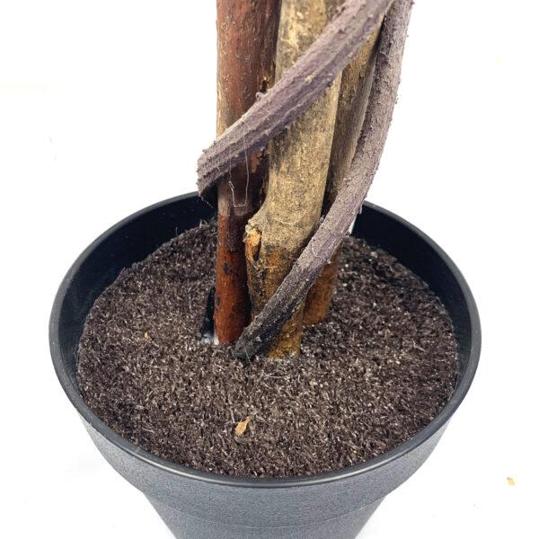 Blossom Tree Pot