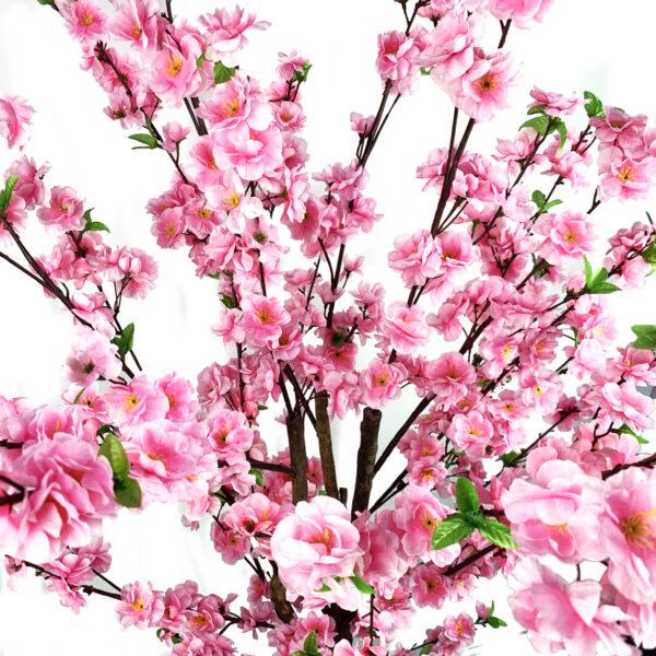 Blossom Tree 1.6m