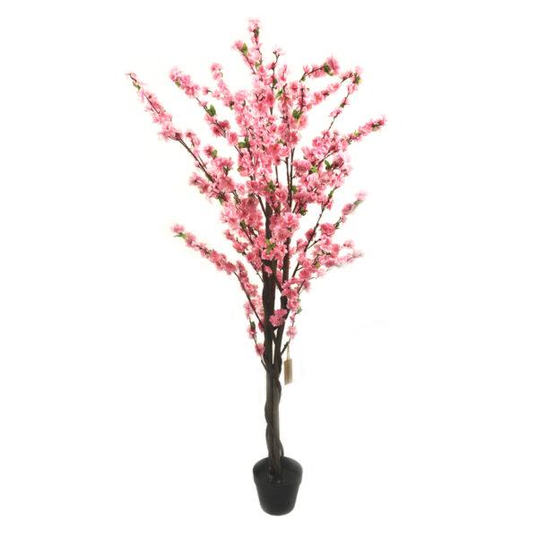 1.6m Blossom Tree
